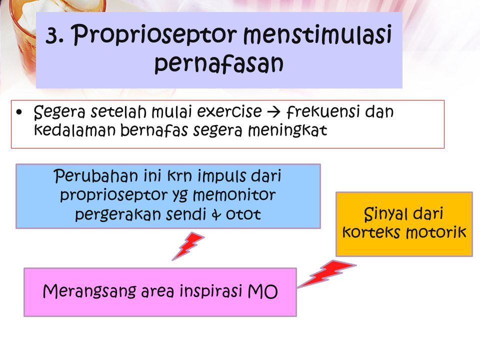 3. Proprioseptor menstimulasi pernafasan