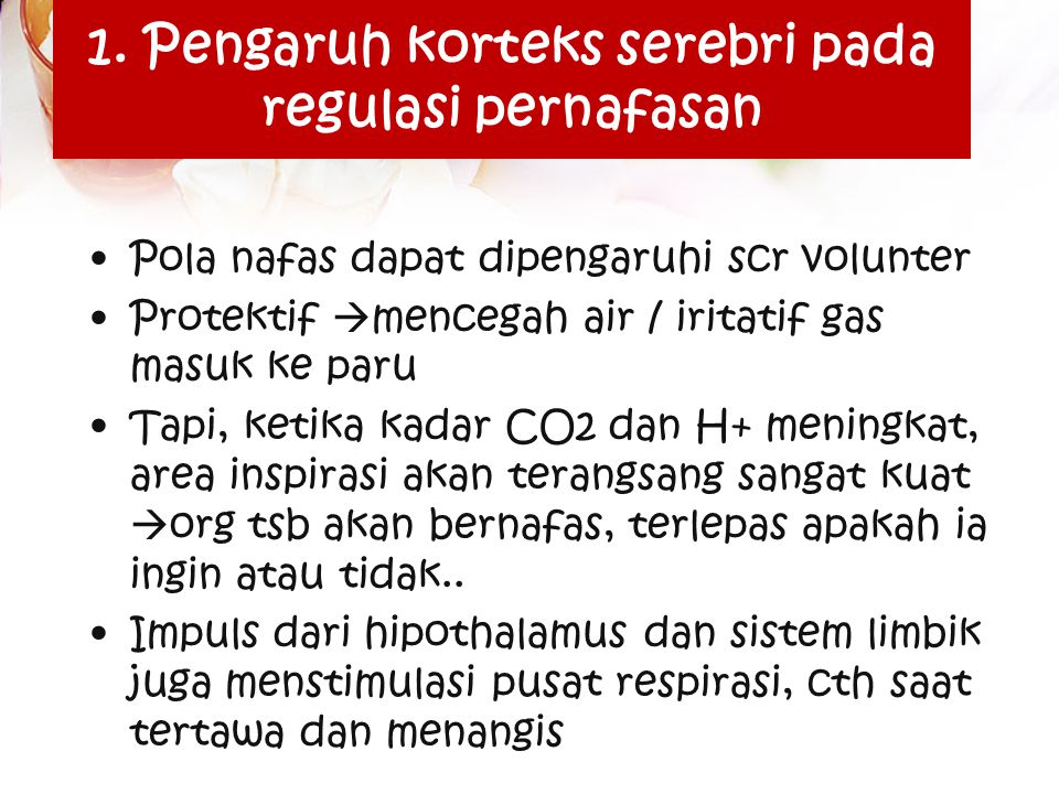 1. Pengaruh korteks serebri pada regulasi pernafasan