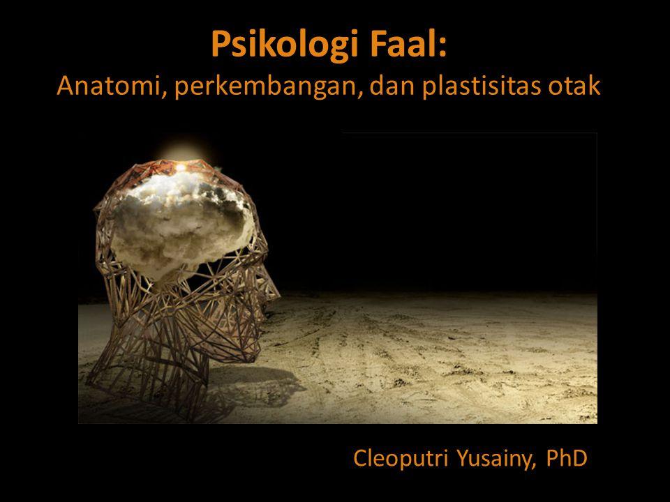 Psikologi Faal: Anatomi, perkembangan, dan plastisitas otak