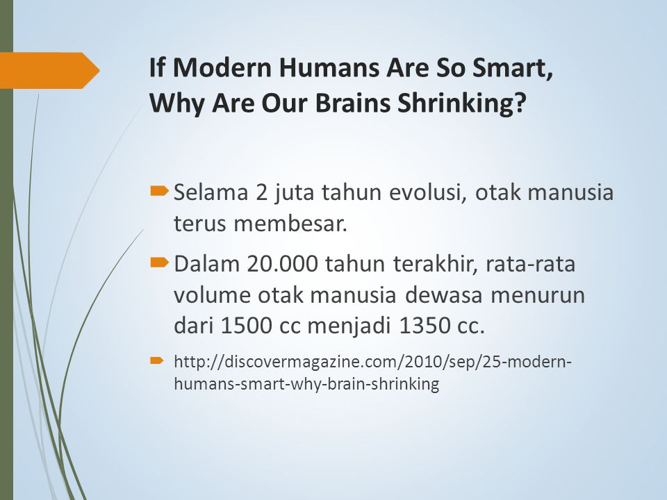 If Modern Humans Are So Smart, Why Are Our Brains Shrinking
