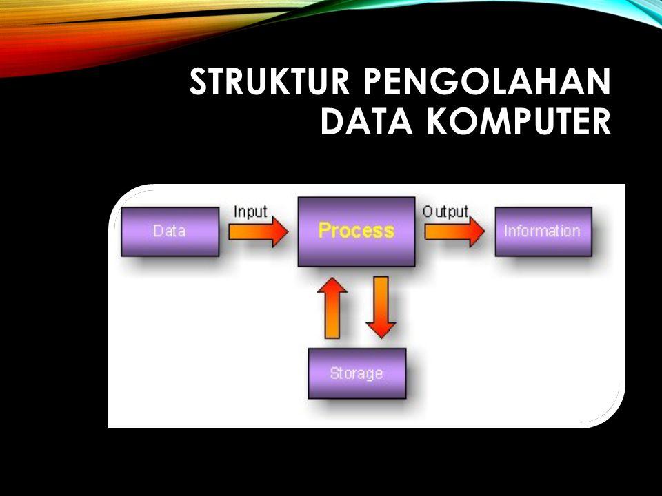 Struktur pengolahan data komputer