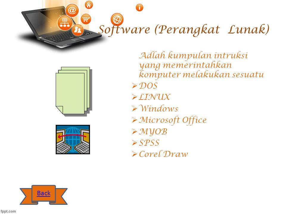 Software (Perangkat Lunak)