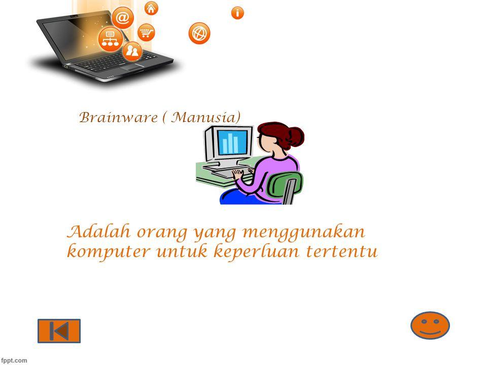 Adalah orang yang menggunakan komputer untuk keperluan tertentu