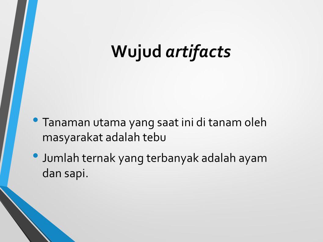 Wujud artifacts Tanaman utama yang saat ini di tanam oleh masyarakat adalah tebu.