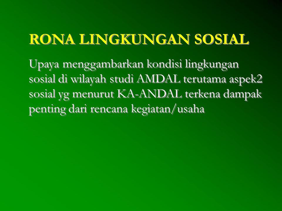 RONA LINGKUNGAN SOSIAL