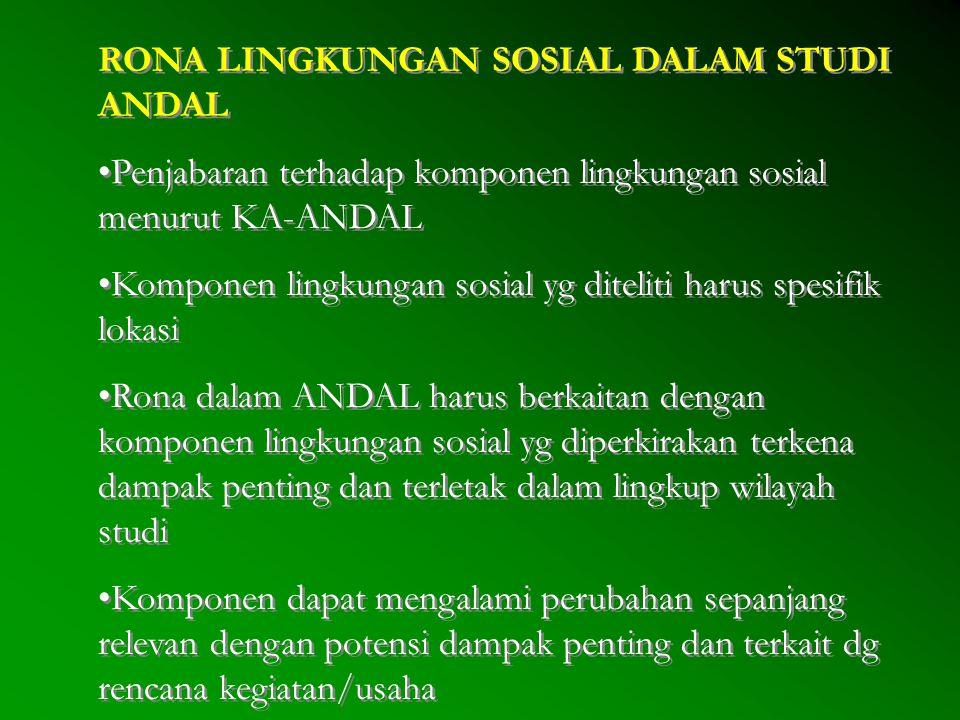 RONA LINGKUNGAN SOSIAL DALAM STUDI ANDAL