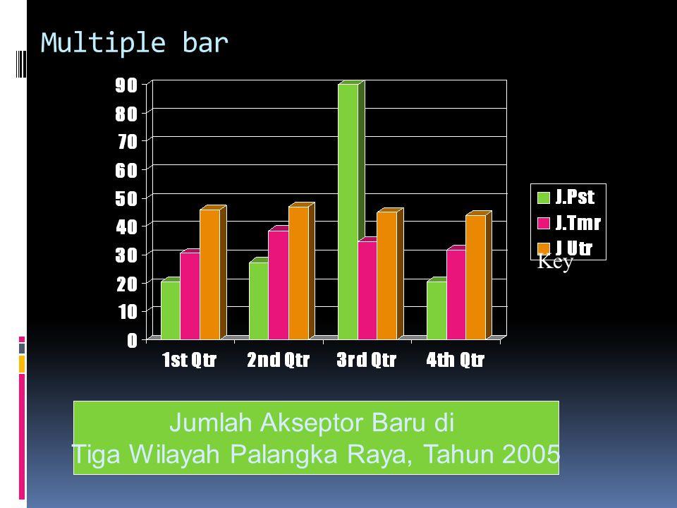 Jumlah Akseptor Baru di Tiga Wilayah Palangka Raya, Tahun 2005