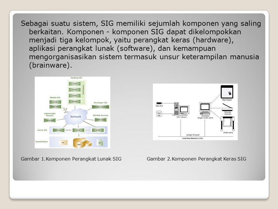 Sebagai suatu sistem, SIG memiliki sejumlah komponen yang saling berkaitan. Komponen - komponen SIG dapat dikelompokkan menjadi tiga kelompok, yaitu perangkat keras (hardware), aplikasi perangkat lunak (software), dan kemampuan mengorganisasikan sistem termasuk unsur keterampilan manusia (brainware).