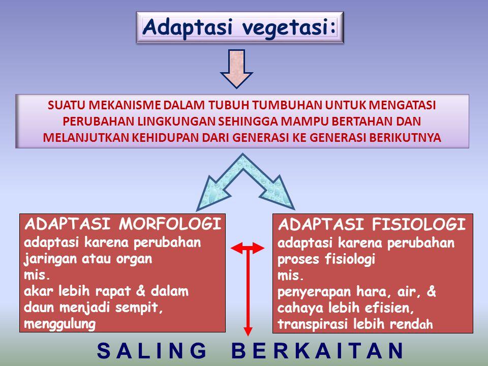 Adaptasi vegetasi: S A L I N G B E R K A I T A N ADAPTASI MORFOLOGI