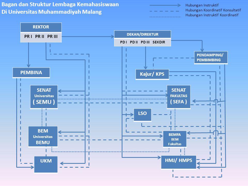 Bagan dan Struktur Lembaga Kemahasiswaan