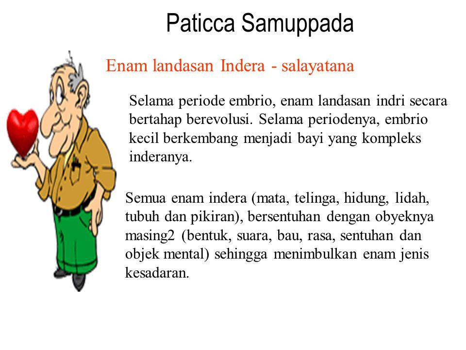 Paticca Samuppada Enam landasan Indera - salayatana