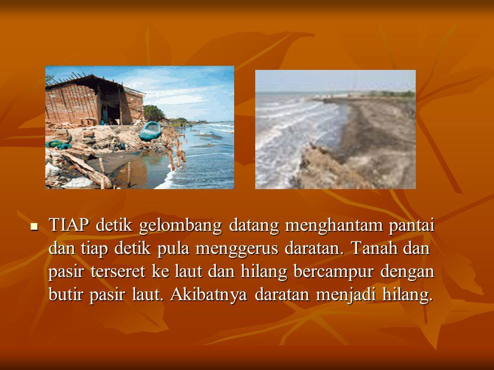 TIAP detik gelombang datang menghantam pantai dan tiap detik pula menggerus daratan.