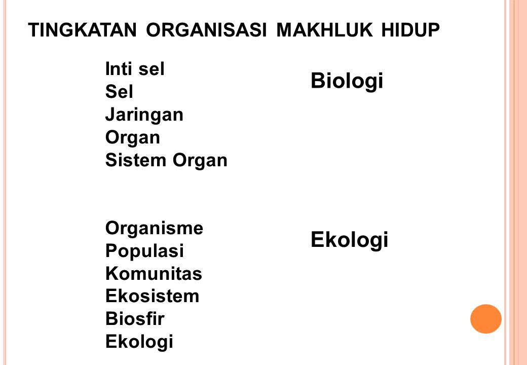 tingkatan organisasi makhluk hidup