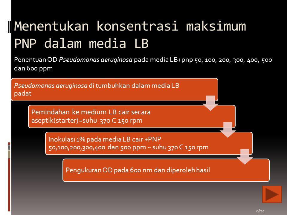 Menentukan konsentrasi maksimum PNP dalam media LB