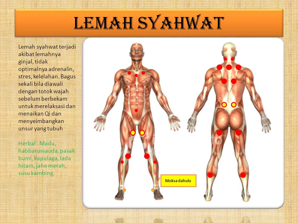 LEMAH SYAHWAT