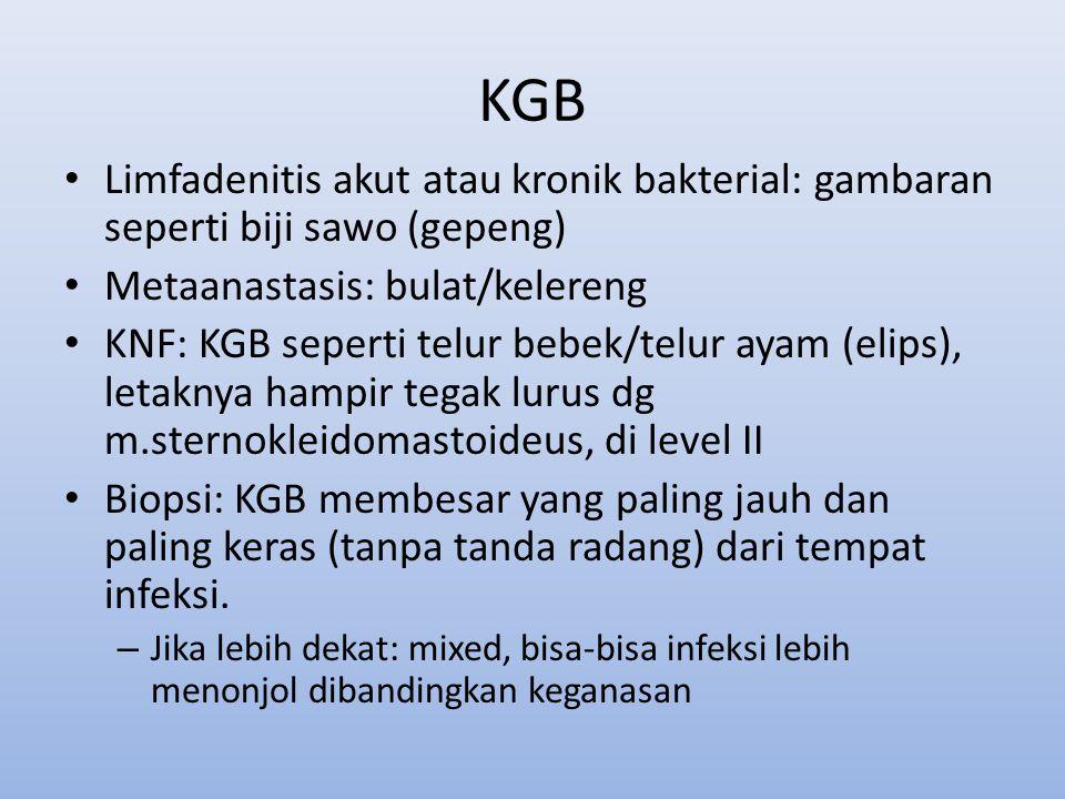 KGB Limfadenitis akut atau kronik bakterial: gambaran seperti biji sawo (gepeng) Metaanastasis: bulat/kelereng.