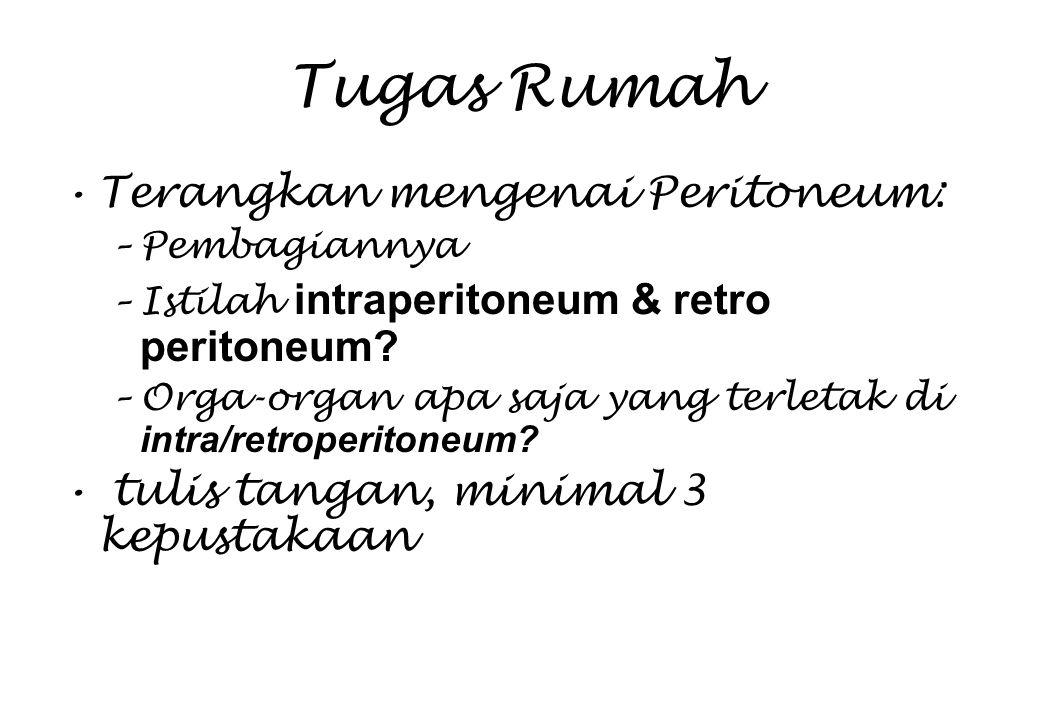 Tugas Rumah Terangkan mengenai Peritoneum: