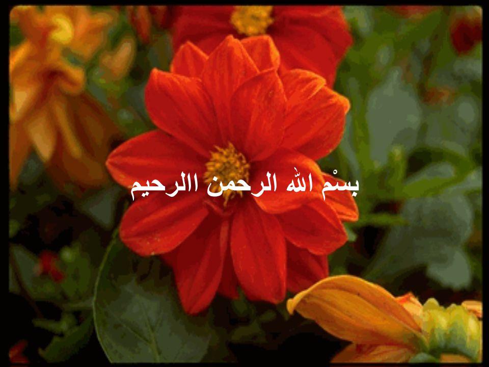 بِسْم الله الرحمن االرحيم