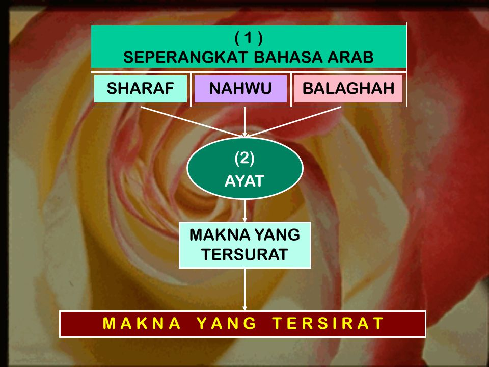 ( 1 ) SEPERANGKAT BAHASA ARAB