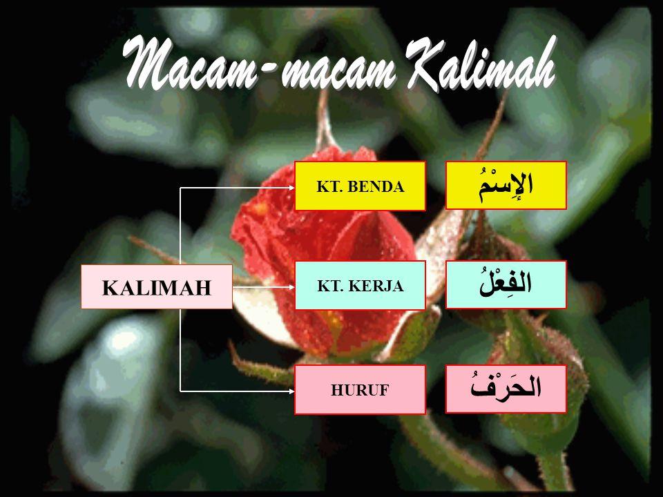 Macam-macam Kalimah الإِسْمُ الفِعْلُ الحَرْفُ KALIMAH KT. BENDA