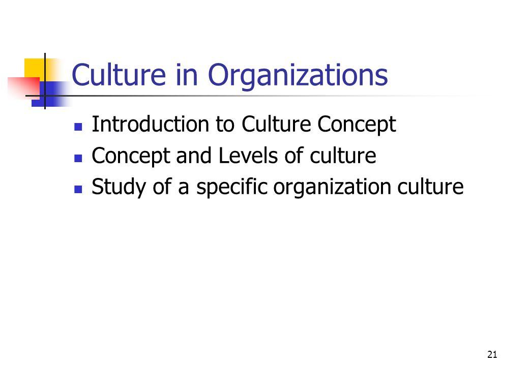 Culture in Organizations