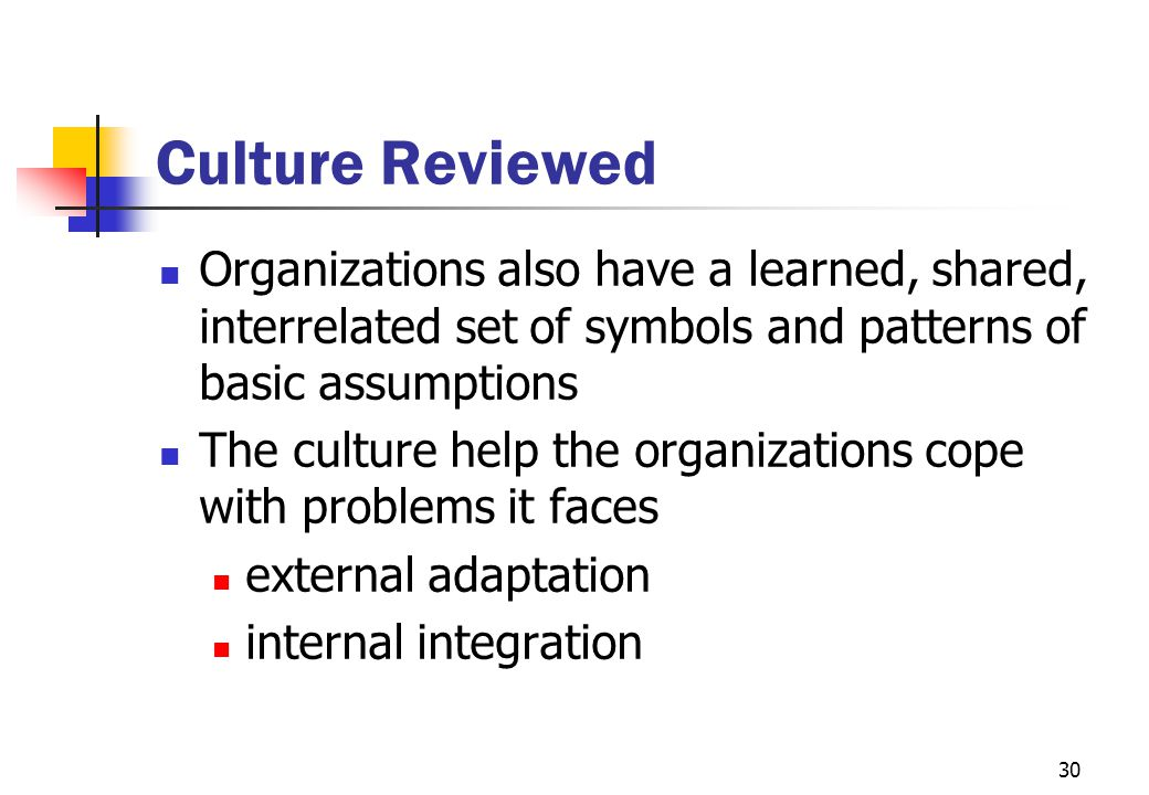 Culture Reviewed Organizations also have a learned, shared, interrelated set of symbols and patterns of basic assumptions.