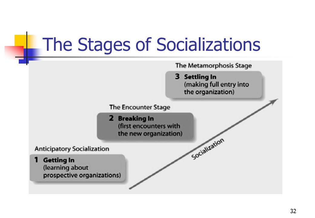 The Stages of Socializations