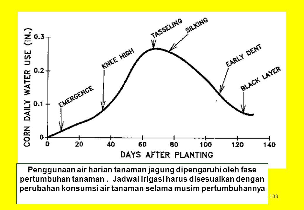 Penggunaan air harian tanaman jagung dipengaruhi oleh fase pertumbuhan tanaman .