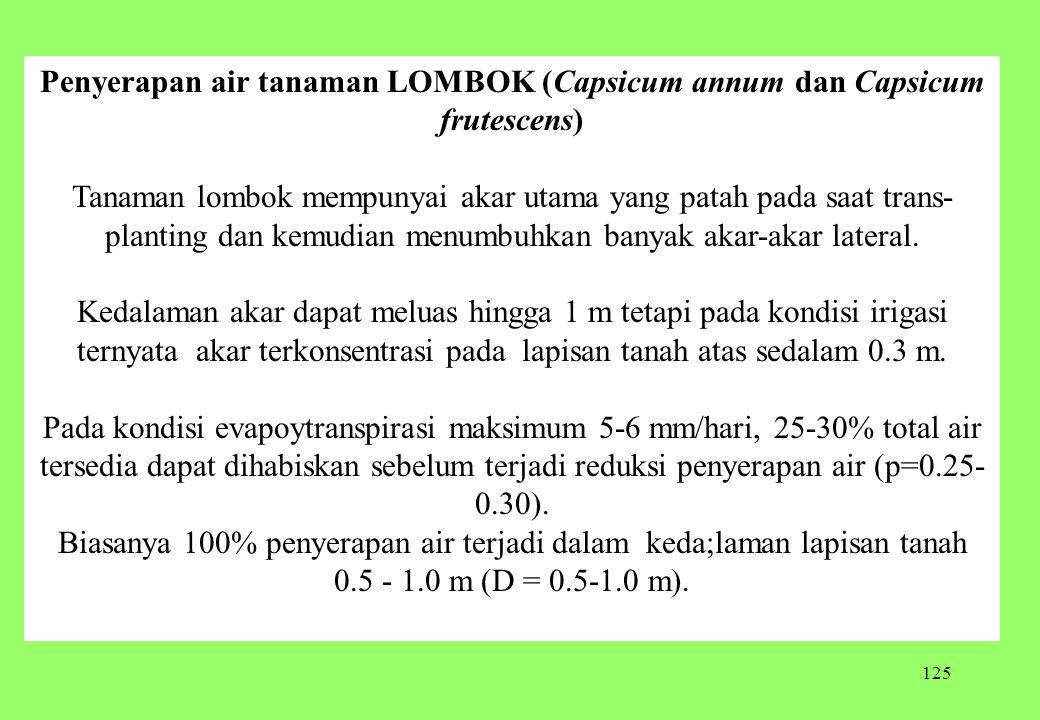 Penyerapan air tanaman LOMBOK (Capsicum annum dan Capsicum frutescens)