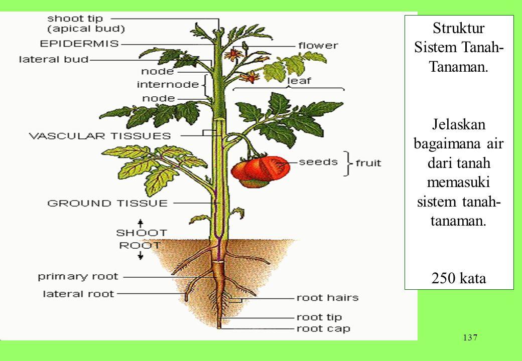 Struktur Sistem Tanah-Tanaman.