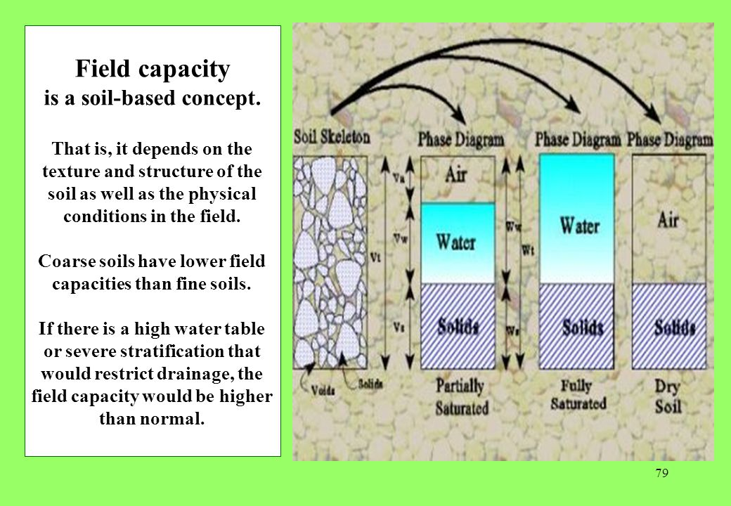Field capacity is a soil-based concept.
