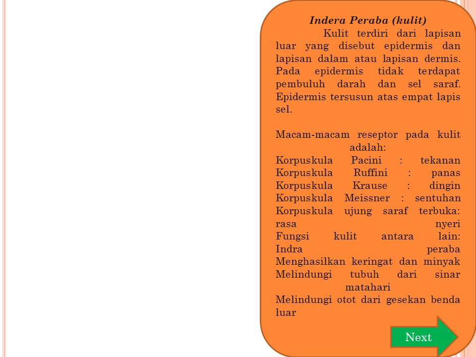 Next Indera Peraba (kulit)