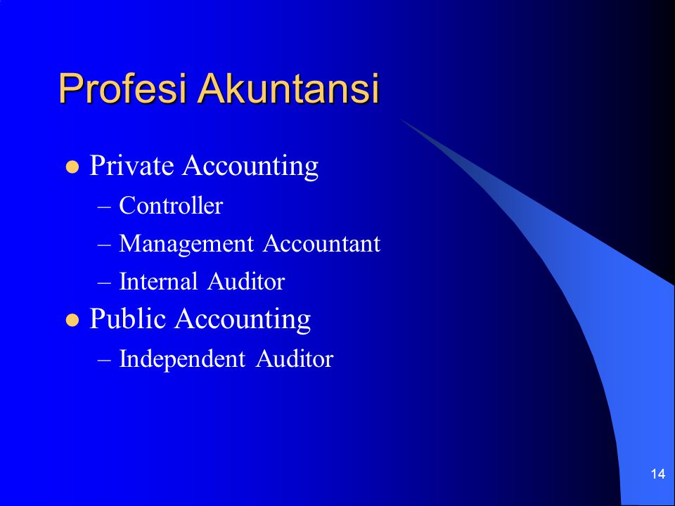 Profesi Akuntansi Private Accounting Public Accounting Controller