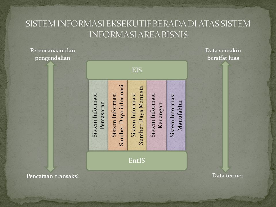SISTEM INFORMASI EKSEKUTIF BERADA DI ATAS SISTEM INFORMASI AREA BISNIS