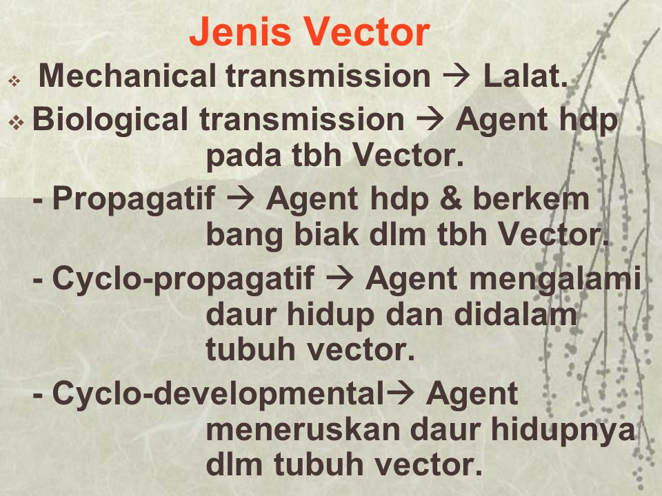 Jenis Vector Biological transmission  Agent hdp pada tbh Vector.