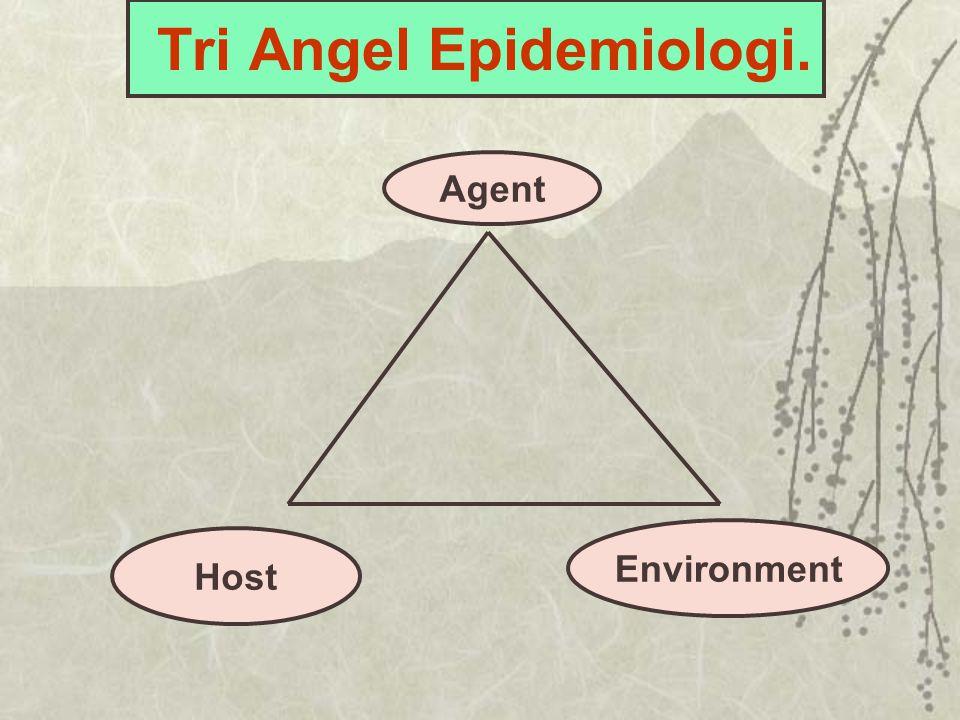 Tri Angel Epidemiologi.