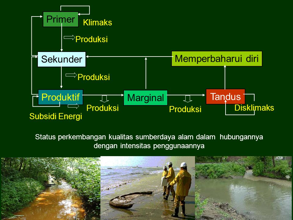 Primer Sekunder Memperbaharui diri Produktif Tandus Marginal Klimaks