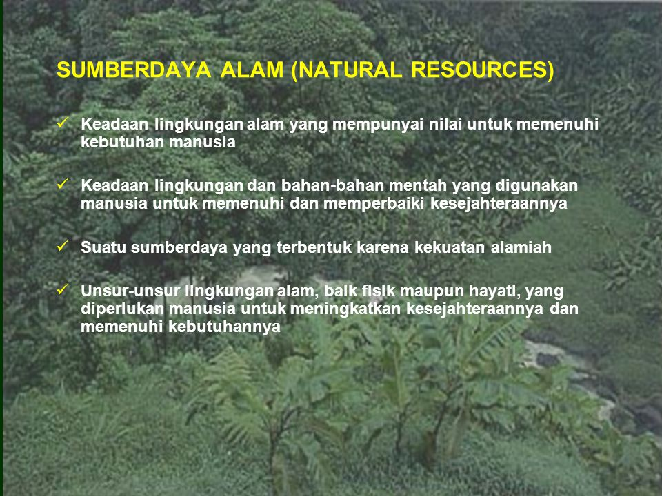 SUMBERDAYA ALAM (NATURAL RESOURCES)