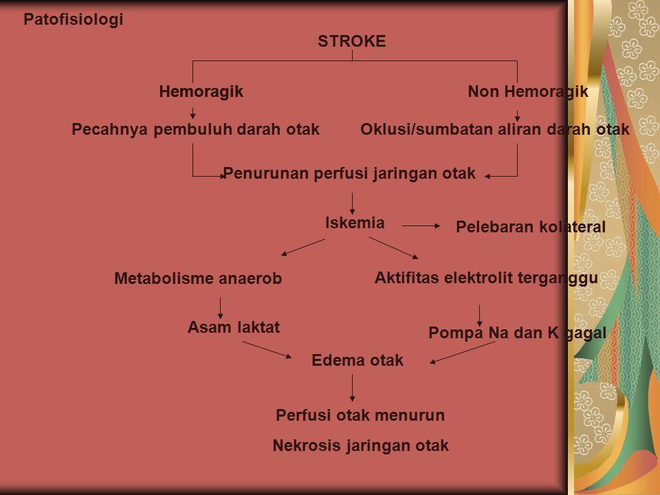 Pecahnya pembuluh darah otak Oklusi/sumbatan aliran darah otak