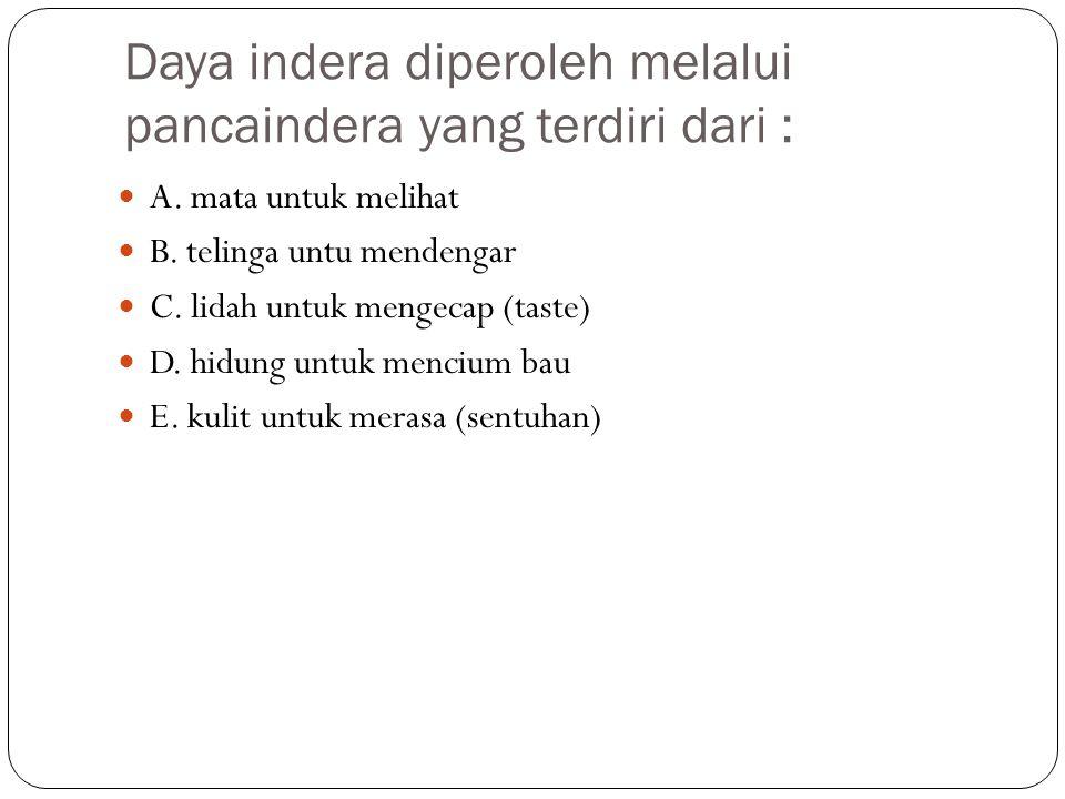 Daya indera diperoleh melalui pancaindera yang terdiri dari :