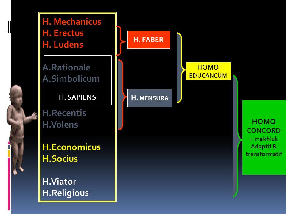 H. Mechanicus H. Erectus H. Ludens A.Rationale A.Simbolicum H.Recentis