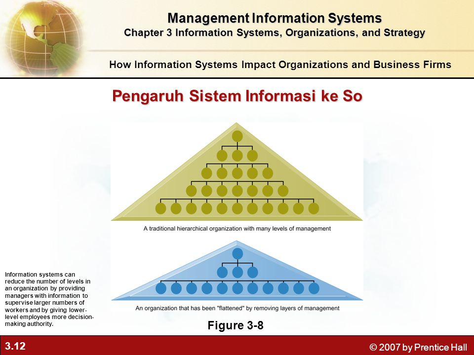 information system in an organization
