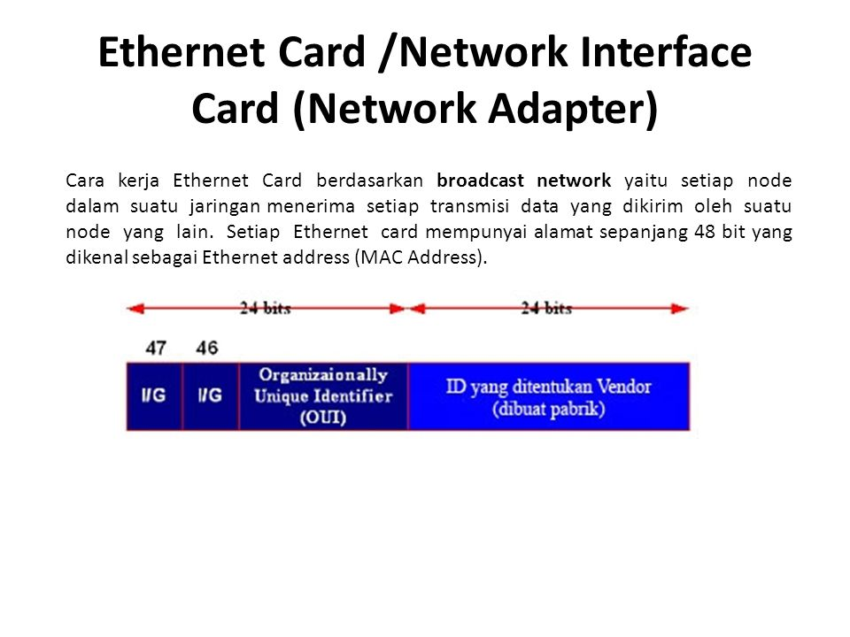 Ethernet Card /Network Interface Card (Network Adapter)