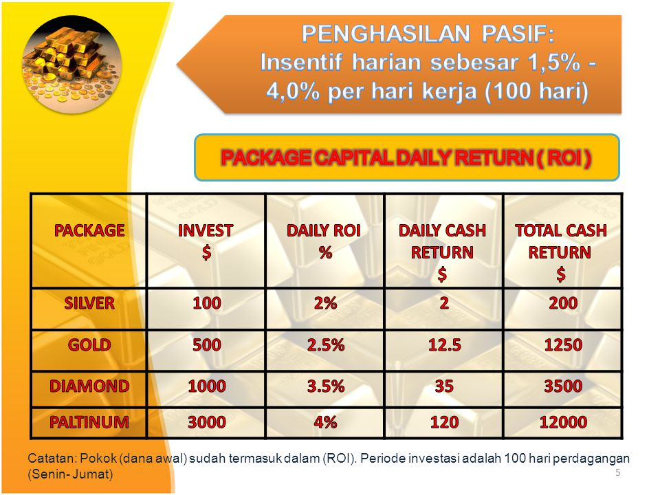 PACKAGE CAPITAL DAILY RETURN ( ROI )