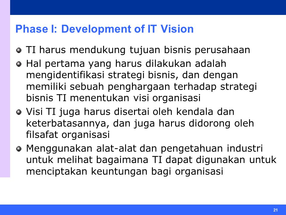 Phase I: Development of IT Vision