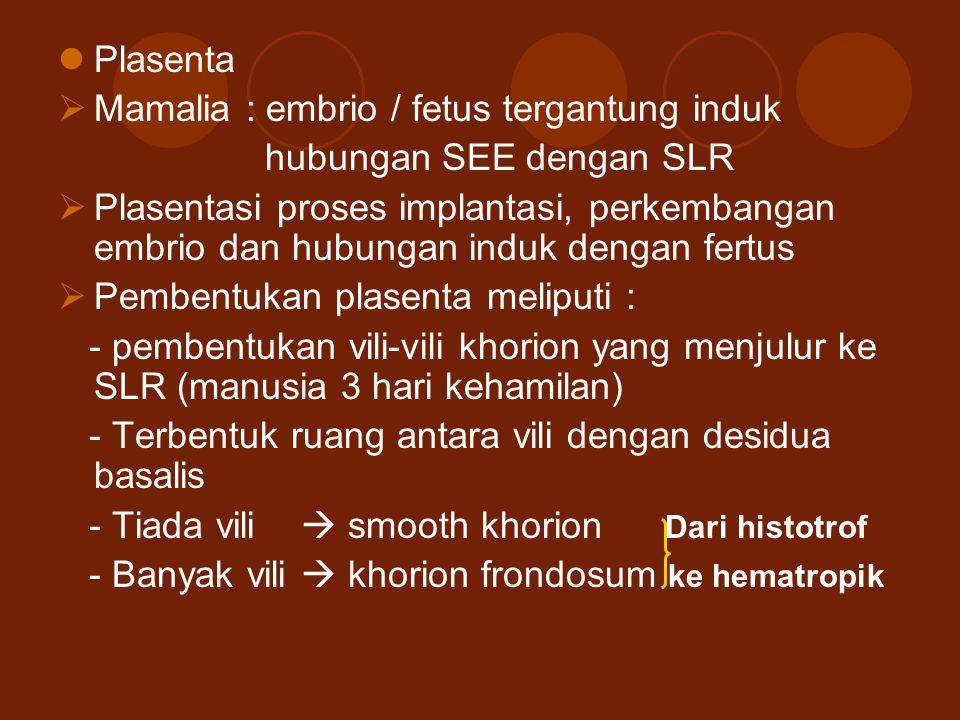 Plasenta Mamalia : embrio / fetus tergantung induk. hubungan SEE dengan SLR.