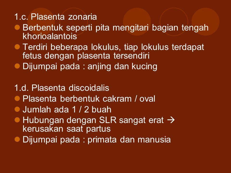1.c. Plasenta zonaria Berbentuk seperti pita mengitari bagian tengah khorioalantois.