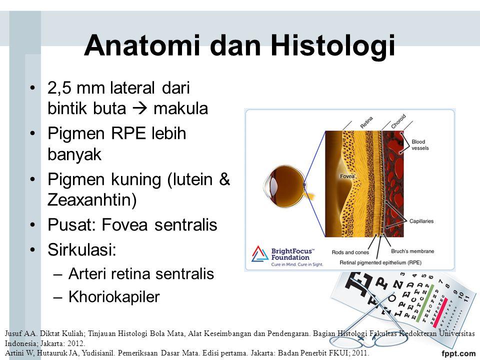 Anatomi dan Histologi 2,5 mm lateral dari bintik buta  makula