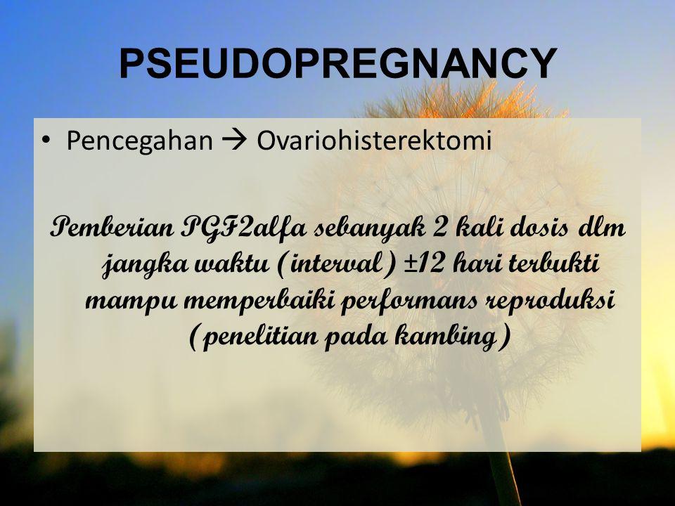 PSEUDOPREGNANCY Pencegahan  Ovariohisterektomi