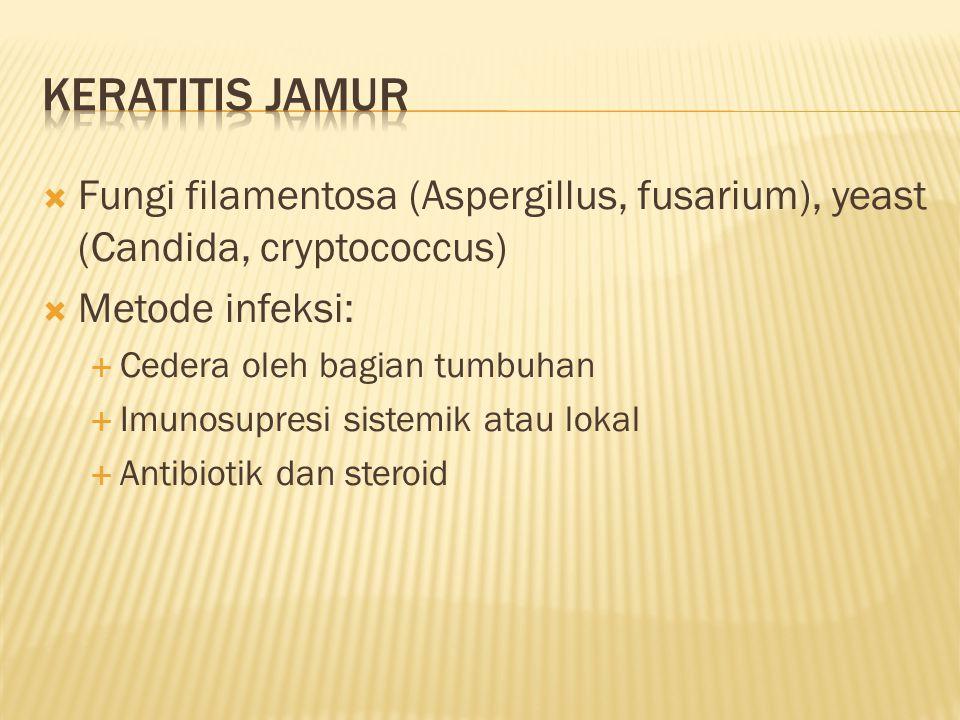 Keratitis jamur Fungi filamentosa (Aspergillus, fusarium), yeast (Candida, cryptococcus) Metode infeksi: